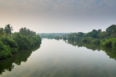 Tree lined River Sal morning mist, Goa, India. Calm waters of River Sal at Talaulim Royalty Free Stock Photos