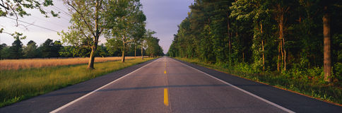 Tree lined road, Maryland Stock Photo