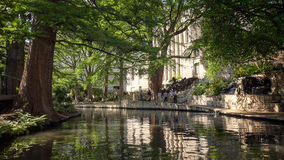 Tree Lined Section of the San Antonio, Texas River Walk Stock Image
