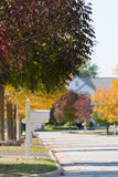 Tree Lined Street. Suburban street lined with trees and mailboxes in fall Royalty Free Stock Image