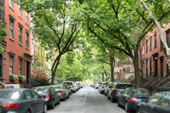 Tree lined street of historic brownstone buildings in a Greenwic Stock Image