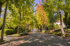 Tree-lined street in a residential neighborhood on a sunny autumn day. Oakland, San Francisco bay, California Stock Photo