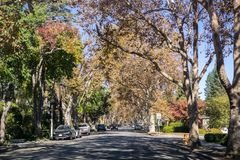 Tree-lined street in a residential neighborhood stock image