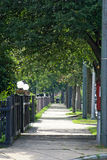 Tree lined suburbia. Tree lined street on a summer afternoon in massachusetts Stock Photography