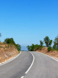 Tree-lined tarred road. Tree-lined road with central markings disappearing in to the distance Stock Images