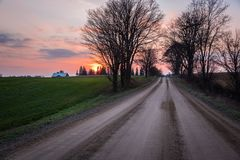 Tree lined unpaved country road at sunset Royalty Free Stock Image