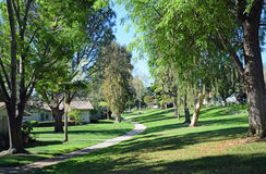 Tree lined walkway in Laguna Woods, Caliornia. Image shows a tree lined walkway in  the heart of he senior retirement community of Laguna Woods, in Southern Royalty Free Stock Photo