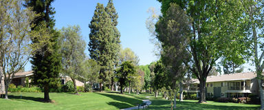 Tree lined walkway in Laguna Woods, Caliornia. Image shows a panorama image of a tree lined walkway in a park like setting in the heart of the senior retirement Stock Image