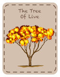 Tree of live with orange leaves Royalty Free Stock Image