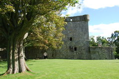 Tree at Loch Leven Castle Royalty Free Stock Photo