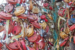 Tree with the locked wedding locks on the Bridge of Love. Royalty Free Stock Photography