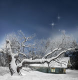 Tree and log cabin in winter Stock Photos