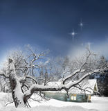 Tree and log cabin in winter Royalty Free Stock Image