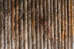Tree log post fence. With tree bark Royalty Free Stock Image