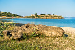 Tree log on a sandy beach, old roman fortress in background Royalty Free Stock Image
