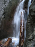 A tree log under a waterfall Stock Photography