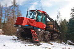 Tree logging machinery. Tree felling in Scots Pine forest, Scotland Stock Photos