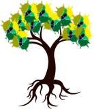 Tree logo Royalty Free Stock Photos