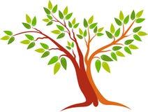 Tree logo Stock Photo