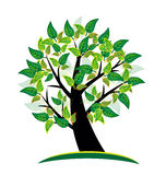 Tree logo background. Green tree with vivid colors leafs vector  background Stock Photo