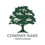 Tree logo design. Tree  Vector illustration logo design Stock Images