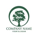 Tree logo design. Tree  Vector illustration logo design Royalty Free Stock Photos