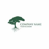 Tree logo design. Tree  Vector illustration logo design Royalty Free Stock Photography