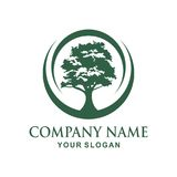Tree logo design. Tree  Vector illustration logo design Royalty Free Stock Image