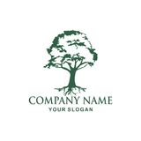 Tree logo design. Tree  Vector illustration logo design Stock Image
