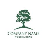 Tree logo design. Tree  Vector illustration logo design Stock Photography