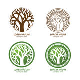 Tree logo Stock Photo