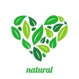 Tree Logo heart shape design vector template. Organic Natural Plant Garden Park Logotype concept icon Stock Images