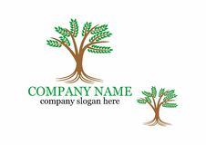 Tree logo. This is my design concept I created a simple logo design tree after that I give each leaf stem to make it look beautiful and nice Stock Image