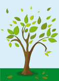 Tree Logo. Schematically drawn tree with leaves. vector Stock Photo