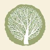 Tree logo template. Stock Photo