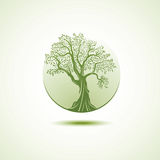 Tree logo template. Growing business concept Stock Photography