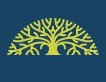 Tree Logo Vector Royalty Free Stock Photo