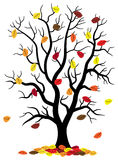 Tree loses fall foliage. Vector illustration of a tree who loses fall foliage Royalty Free Stock Photos