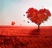 Tree of love. In autumn Royalty Free Stock Photography