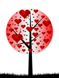 Tree love Royalty Free Stock Image