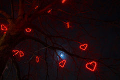 Tree of love. Tree decorated with red neon hearts for Saint Valentine`s day in Stockholm Suburbs Stock Photography