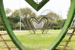 Tree love Royalty Free Stock Image