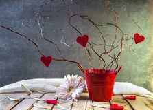Tree Lovers Still Life Red Hearts Stock Photo