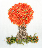 A tree made of lentils and mung beans Royalty Free Stock Images