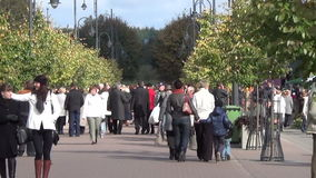 Tree mall people autumn. Large tree-lined central city mall. Sunny autumn day a crowd of people on September 29, 2013 in Sirvintos, Lithuania stock footage
