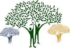 tree man Stock Image