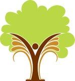 Tree man logo. Illustration art of a tree man logo with isolated background Stock Image