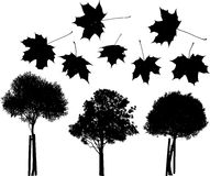 Tree and maple leaves silhouettes Royalty Free Stock Photography