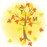 Tree maple with letters autumn Royalty Free Stock Image