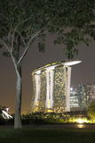Tree and Marina Bay Sands Royalty Free Stock Image